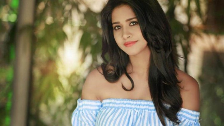 Nabha Natesh Wiki, Biography, Age, Height, Family, Salary & Boyfriend